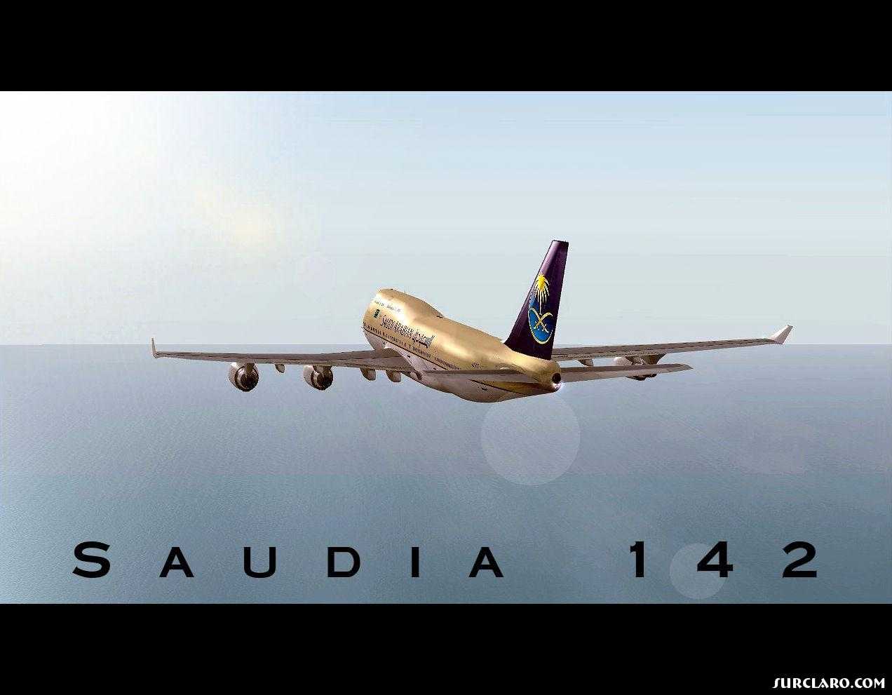 Saudi Arabian 747-400 cruising - Photo 15669