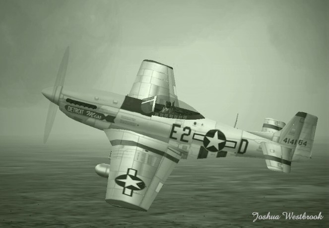 The Mustang. My favorite old time warbird.  - Photo 1181