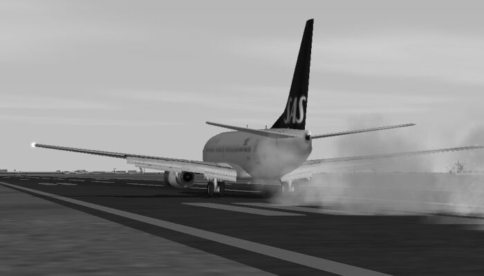 Ok, I might catch grief for saying this, but I think the 737-600 is one of the sexiest passenger planes out there!! Here is one I downloaded, awesome flight dynamics, and great textures! Touchdown, KCLT. - Photo 1803