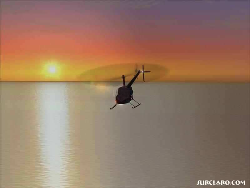 The default Robinson flying towards the great sunset! - Photo 3337