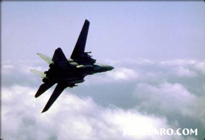Tight turn on a F14, formation break - Photo 154