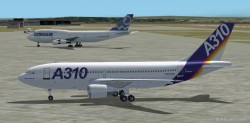 FS2002 A310-222 House Colors Gmax Model image 1