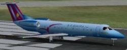 FS2002 Embraer 135 Inter Mozambique Metallic image 1