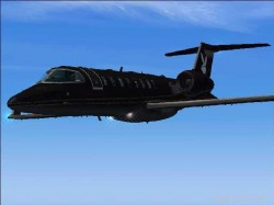 Fs2004 playboy learjet textures image 1