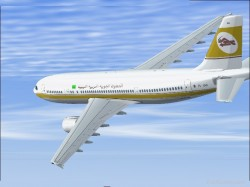 Model Aerodesign A300 600 R PW Engines Aircraft image 1
