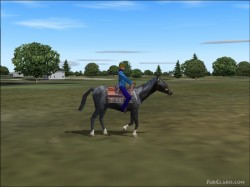 FS2004 Rideable Black Stallion Features- 3 image 1