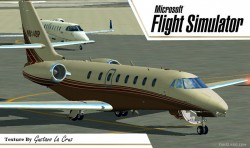 FS2004 Cessna Citation Sovereign N914SP Beta image 2