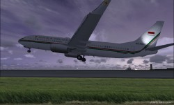 737-8U3 BBJ2 Republik Indonesia image 5