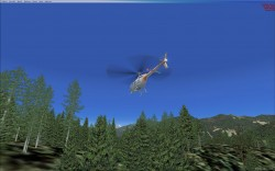 GenReloaded Photoreal Trees FSX image 2