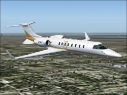 Fs2004 Leopard Skin Stripes Learjet 45 image 1