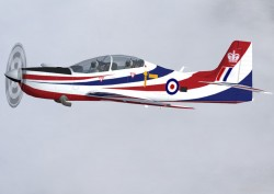Painters release model Shorts Tucano image 5