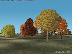 Fs2002 Version 2 Deciduous Tree Macros image 1
